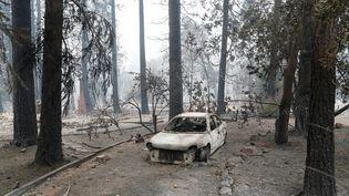 La carcasse d'une voiture gît dans la ville de Paradise (Etats-Unis), après le passage des flammes, le 13 novembre 2018. (TERRAY SYLVESTER / REUTERS)