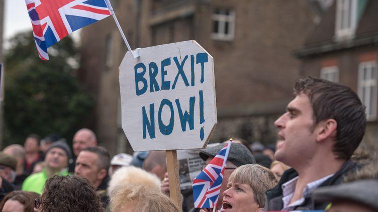 Des manifestants réclament l'application du Brexit à Londres, le 23 novembre 2016. (IAN DAVIDSON / CITIZENSIDE)