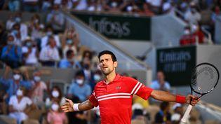 Le tennisman serbe Novak Djokovic lors de la finale du tournoi de Roland-Garros contre le Grec Stefanos Tsitsipas, le 13 juin 2021, à Paris. (ANNE-CHRISTINE POUJOULAT / AFP)