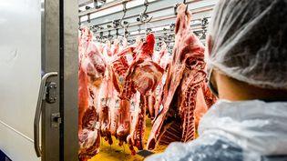 De la viande est entreposée dans une chambre froide dans une entreprise d'abattage, de découpe et de transformation, le 4 mai 2021, à Perpignan (Pyrénées-Orientales). (JC MILHET / HANS LUCAS / AFP)