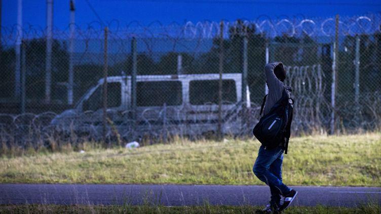 (Des policiers britanniques seront chargés de lutter contre les passeurs dans la région de Calais © MaxPPP)