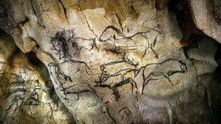 La grotte est riche de 425 représentations animales. Ce sont les plus anciennes peintures connues à ce jour. (JEFF PACHOUD / AFP)