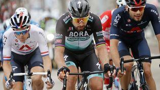 Peter Sagan (Bora) échappé lors de la 10e étape du Tour d'Italie (LUCA BETTINI / AFP)