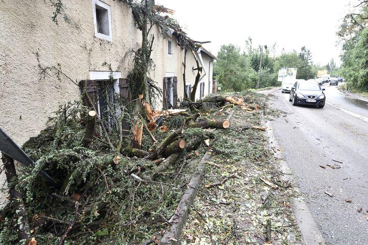 Des arbres sont tombés sur une maison de Montauban (Tarn-et-Garonne), le 1er septembre 2015. (PASCAL PAVANI / AFP)