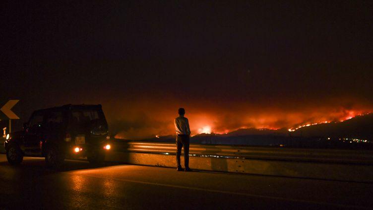 Un homme regarde l'incendie depuis une route àAnsião, dans le centre du Portugal, le 18 juin 2017. (PATRICIA DE MELO MOREIRA / AFP)