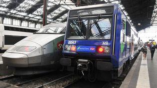 Un TGV et un Ter bloqués en gare de Lyon le 10 juin 2014, lors de la grève des cheminots. (CITIZENSIDE/YANN KORBI / AFP)