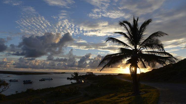 Une plage sur l'ile de Saint-Martin, dans les Antilles. (MIGUEL MEDINA / AFP)