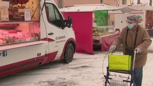 Vague de froid : en Alsace, la neige ne déstabilise pas les habitants (France 3)