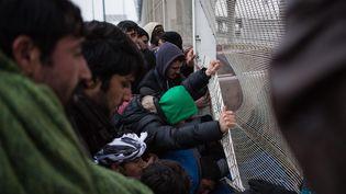 Des migrants et des manifestants qui les soutiennent s'introduisent dans le port de Calais, le 23 janvier 2016. (MAXPPP)