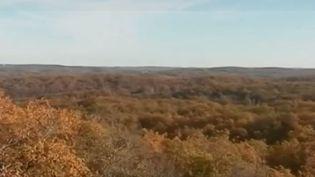 Des paléontologues fouillent le sol du Lot, et viennent de mettre à jour des traces d'animaux du Jurassique. Reportage à Crayssac, près de Cahors. (FRANCE 3)