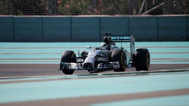 Hamilton et Rosberg ont encore été intouchables (MARWAN NAAMANI / AFP)