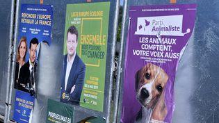 Des affiches du Parti animaliste, d'Europe Ecologie - Les Verts et des Républicains, à Paris, le 16 mai 2019. (MAXPPP)