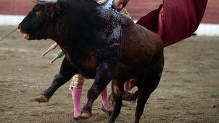 Le matador espagnolIvan Fandiño le 17 juin 2017 àAire-sur-l'Adour. (IROZ GAIZKA / AFP)