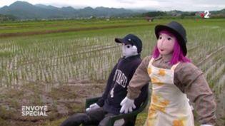 """Envoyé spécial. Repeupler les environs de Fukushima, """"même si c'est avec des poupées"""" (FRANCE 2 / FRANCETV INFO)"""