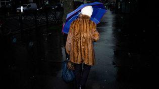 Une femme avec un manteau de fourrure à Paris. (EDOUARD RICHARD / HANS LUCAS / AFP)