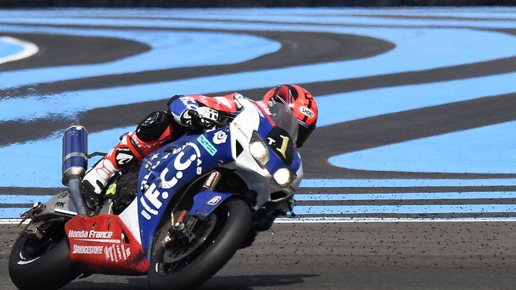 Le Français Mike Di Meglio au guidon de la Honda TSR  (BORIS HORVAT / AFP)