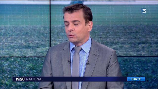 Glyphosate : la France peut-elle interdire l'herbicide ?