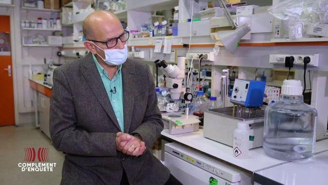 Complément d'enquête. Course au vaccin anti-Covid : l'institut Pasteur sera-t-il la tortue de la fable