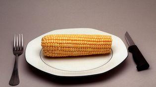 Le seul OGM autorisé à la consommation en tant que tel est le maïs doux, mais on n'en trouve pas dans les rayons des supermarchés français. (JEAN-PIERRE MULLER / AFP)