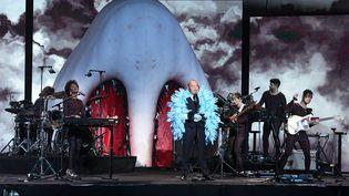 Philippe Katerine sur scène lors de la 35e édition des Victoires de la musique, vendredi 14 février 2020 à Boulogne-Billancourt (Hauts-de-Seine). (ALAIN JOCARD / AFP)