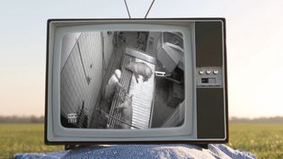 """Maltraitance animale : un employé d'abattoir se défend dans """"Envoyé spécial"""". (FRANCE 2 / FRANCETV INFO)"""