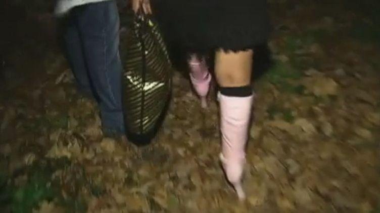 Une personne interpellée dans le bois de Boulogne, à Paris, dans la nuit du 1er au 2 mars 2012. (FTVI / FRANCE 2)