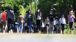 Des promeneurs dans un parc de Tokyo, la capitale japonaise, le 11 mai 2020. (KOJI ITO / YOMIURI / AFP)