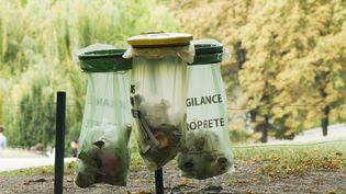 Des poubelles dans un parc à Paris. (MICHËLE CONSTANTINI / MAXPPP)