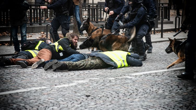 Des manifestants sont interpellés à Paris, le 8 décembre 2018. (MISTERSQUARE / AFP)