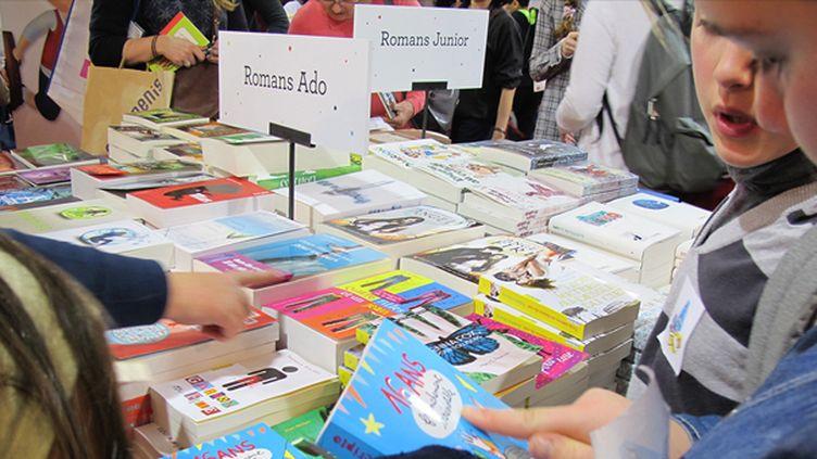 Le secteur de la littérature jeunesse en baisse  (Laurence Houot / Culturebox)