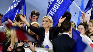Marine Le Pen a tenu un meeting à Bordeaux (Gironde), le 2 avril 2017. (GEORGES GOBET / AFP)