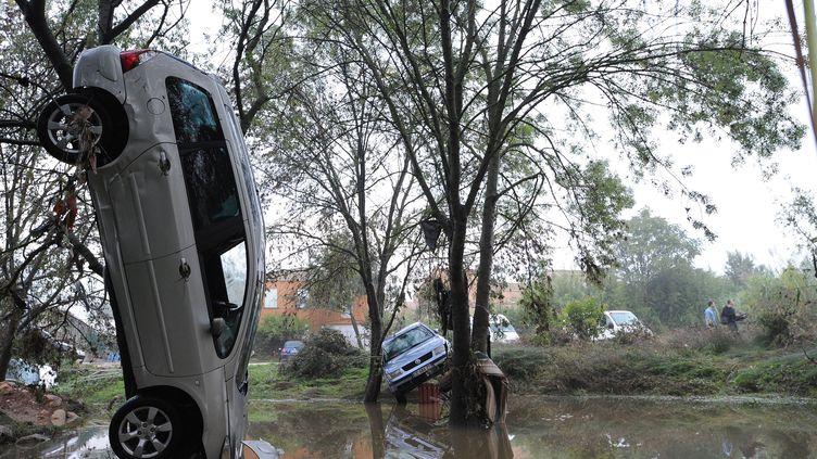 Des voitures empalées sur des arbres après la crue à Grabels (Hérault), le 7 octobre 2014. (SYLVAIN THOMAS / AFP)