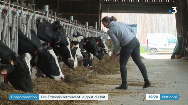 Consommation : les Français retrouvent le gout du lait
