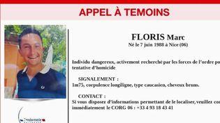 Féminicide : un homme suspecté d'avoir abattu une femme toujours recherché à Gréolières, dans les Alpes-Maritimes (FRANCE 2)