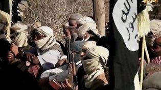 Capture d'écran d'une vidéo publiée le 29 mars 2014 par la branche média d'Al-Qaïda au Yémen (Aqpa), montrant des jihadistes d'Aqpa. (AL-MALAHEM MEDIA / AFP)