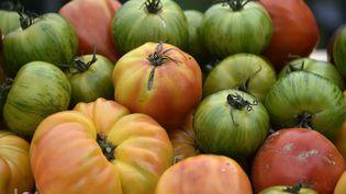 Les scientifiques de l'Inra viennent de récolter les premières tomates d'une variété qu'ils ont créée. Photo d'illustration. (PASCAL PAVANI / AFP)