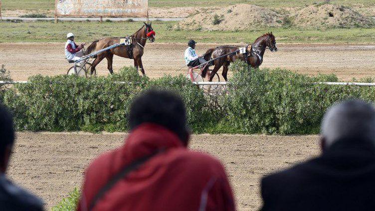 Des turfistes devant une course hippique à l'hippodrome du Caroubier, à Alger, le 29 mars 2018. (RYAD KRAMDI / AFP)