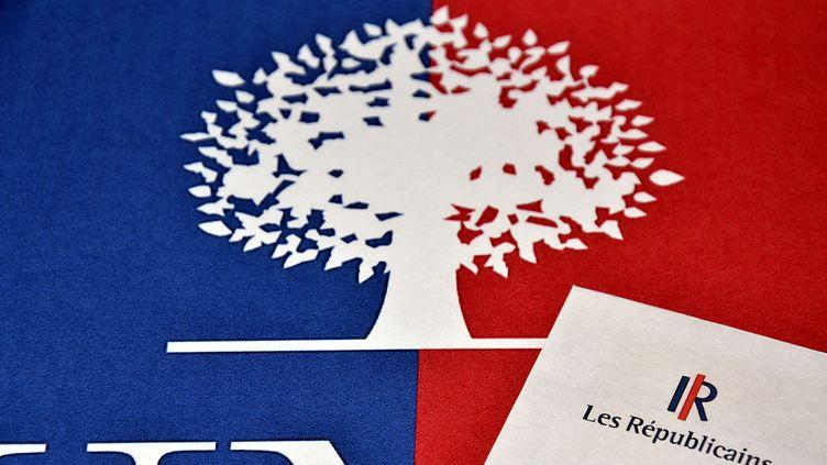 Les adhérents UMP sont appelés à se prononcer, les 28 et 29 mai 2015, sur la nouvelle appellation prévue pour le parti, Les Républicains. (GERARD BOTTINO / CITIZENSIDE / AFP)