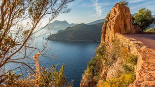 Oui, ce paysage paradisiaque est bien en France, et plus précisement en Corse du Sud. Les golfes de Porto, de Girolata et la calanche de Piana font de la réserve naturelle de Scandola un paysage de carte postale. (ROBERT PALOMBA / ONLY FRANCE / AFP)