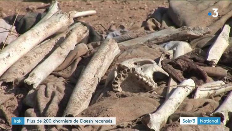 Un charnier découvert en Irak (France 3)