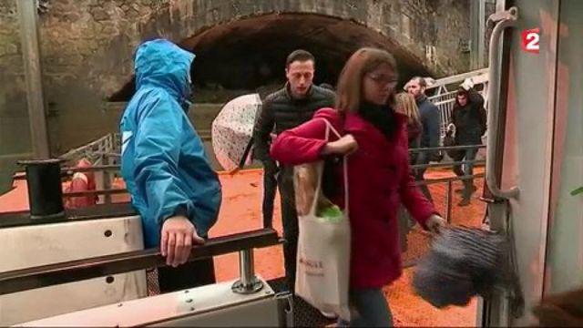 Nantes : le succès des bus fluviaux