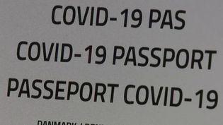 Covid-19 : le passeport vaccinal pourrait-il voir le jour en France ? (France 3)