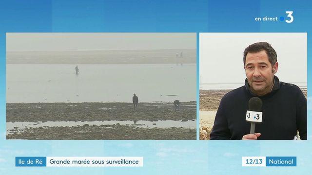 Île de Ré : grande marée sous surveillance