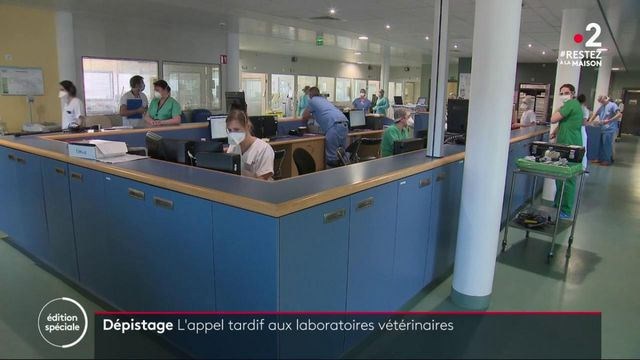 Coronavirus : les laboratoires vétérinaires mobilisés