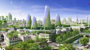 Des immeubles végétalisés. (FRANCE 2)