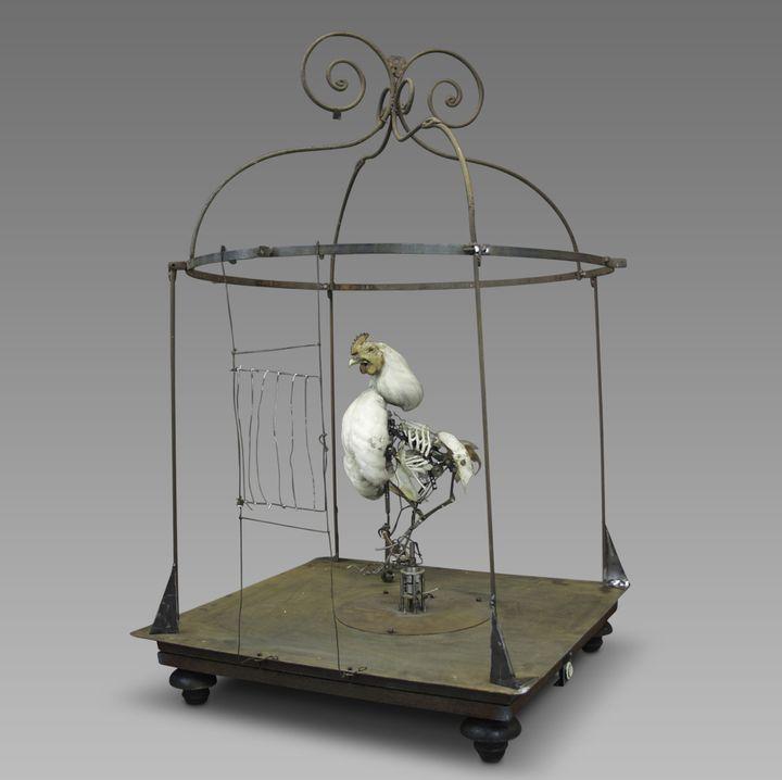 Le Coq, 1993-2013, automate électromécanique  (Gilbert Peyre, photo memento-mori)
