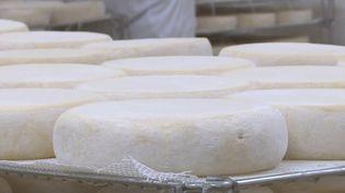 Côte-d'Or : l'abbaye de Cîteaux fait un carton en vendant ses fromages en ligne (FRANCE 3)