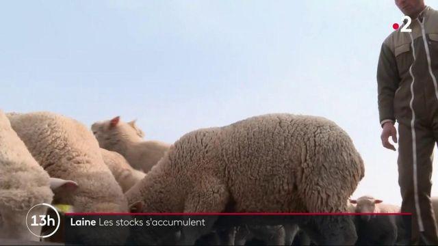Crise sanitaire : les producteurs de laine ne parviennent plus à vendre