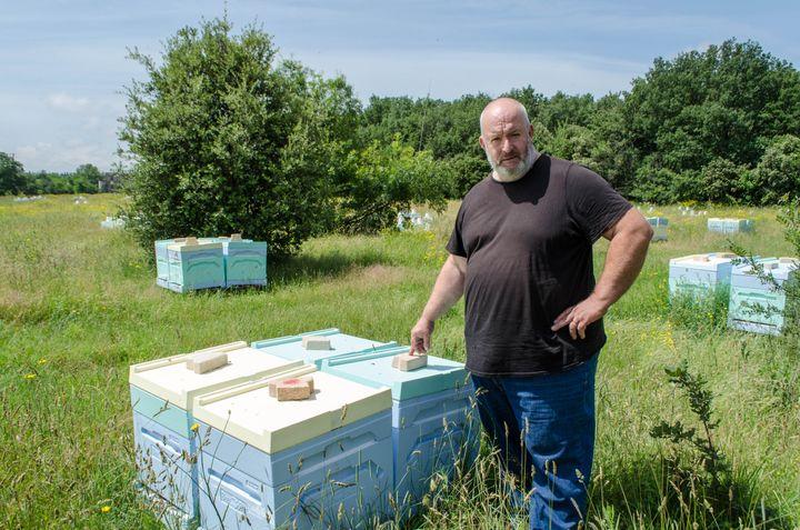 Pascal Thiry, apiculteur à Montélimar, dans l'un de ses ruchers, le 5 juin 2018. (CAMILLE CALDINI / FRANCEINFO)