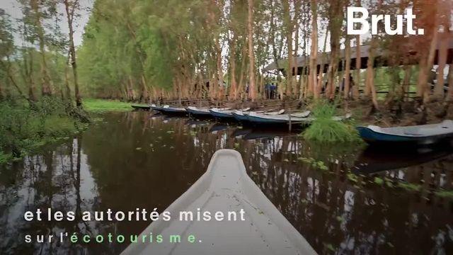 Dans cette zone autrefois ravagée par la guerre du Vietnam, s'étend une immense forêt plongée dans l'eau, à l'abri du tourisme de masse. Voici les paysages magiques de Tra Su.